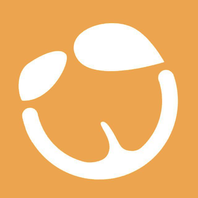 橙果医生视频
