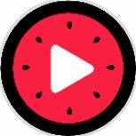 西瓜视频集