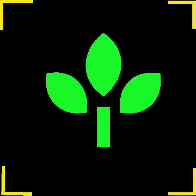 拍照识植物